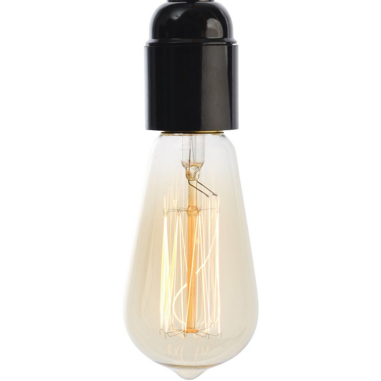 Squirrel Clear Edison Bulb E27 40W thumbnail
