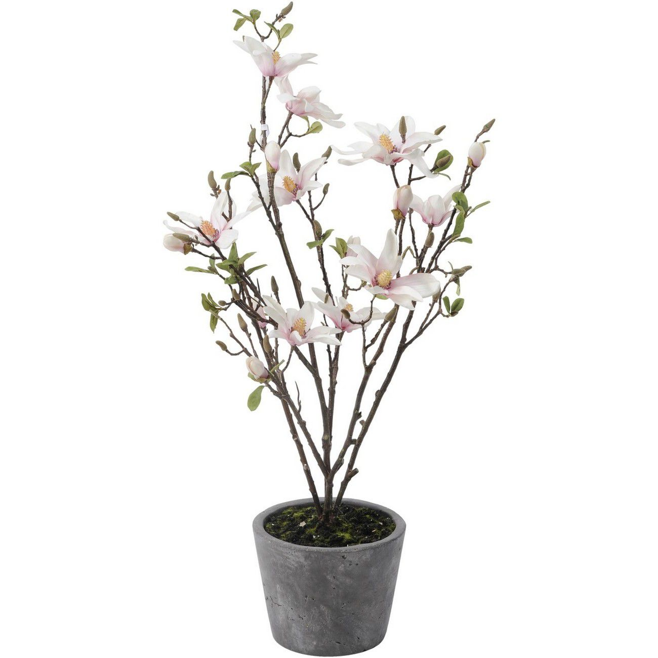 Faux Magnolia Stems In Decorative Pot 100cm thumbnail