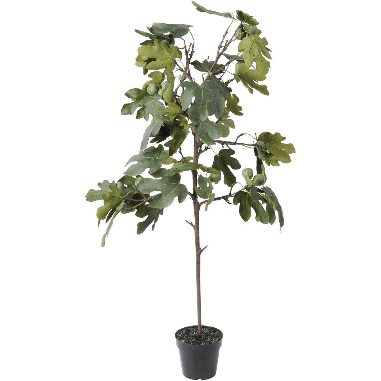 Faux Fig Tree In Pot 142cm thumbnail