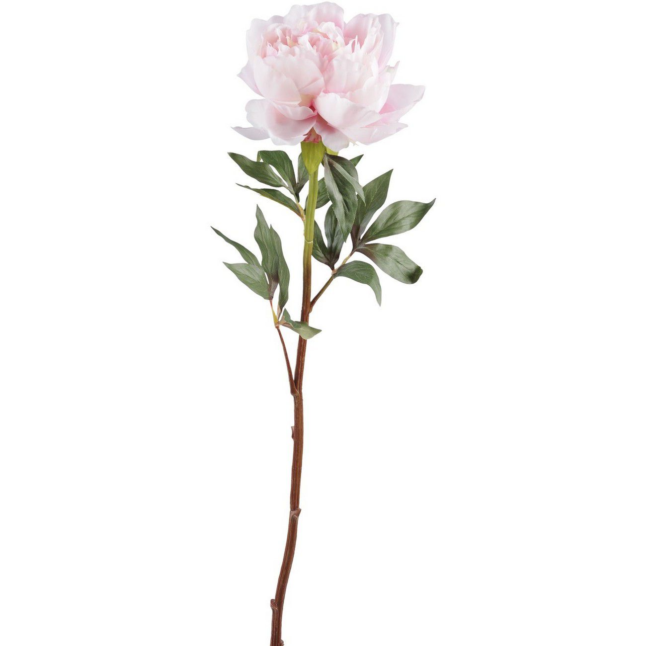 Faux Pink Peony Spray With Leaves 70cm thumbnail