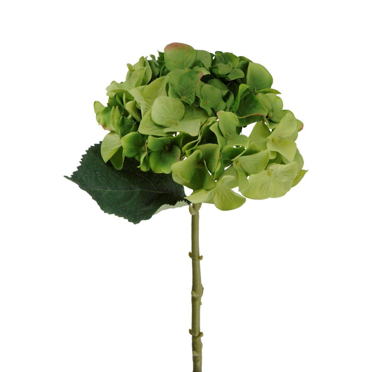 Faux Green Hydrangea With Leaves 47cm thumbnail