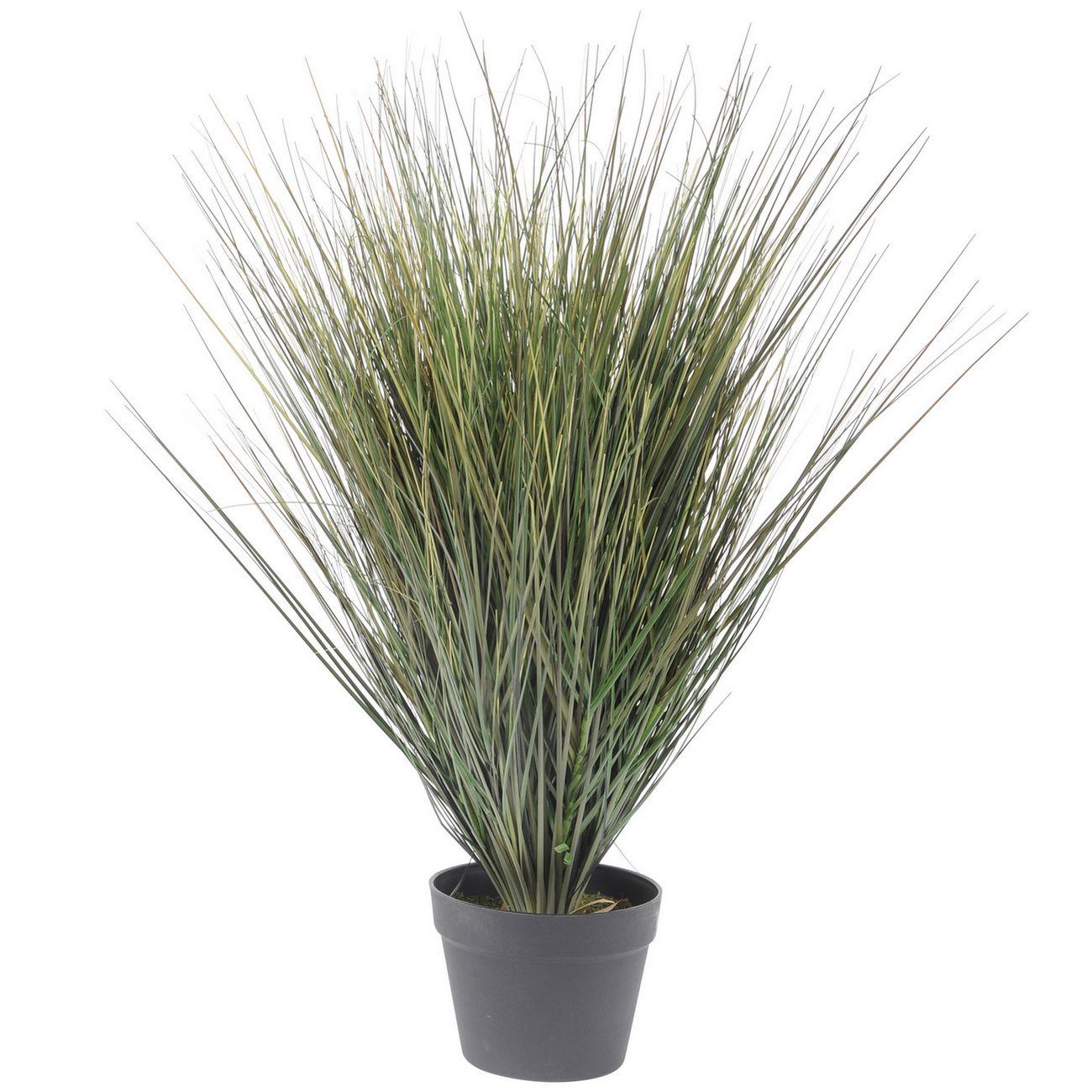 Faux Onion Grass In Plastic Pot 81cm thumbnail