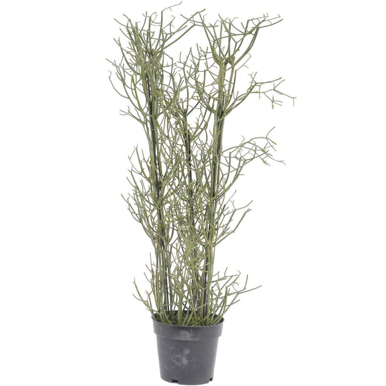 Faux Rhipsalis Plant In Plastic Pot 106cm thumbnail