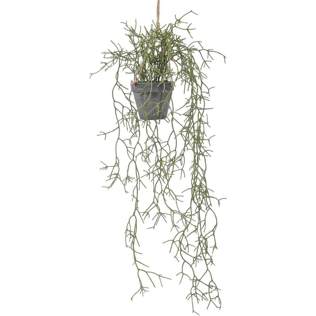 Faux Hanging Rhipsalis Plant In Pot 30cm thumbnail