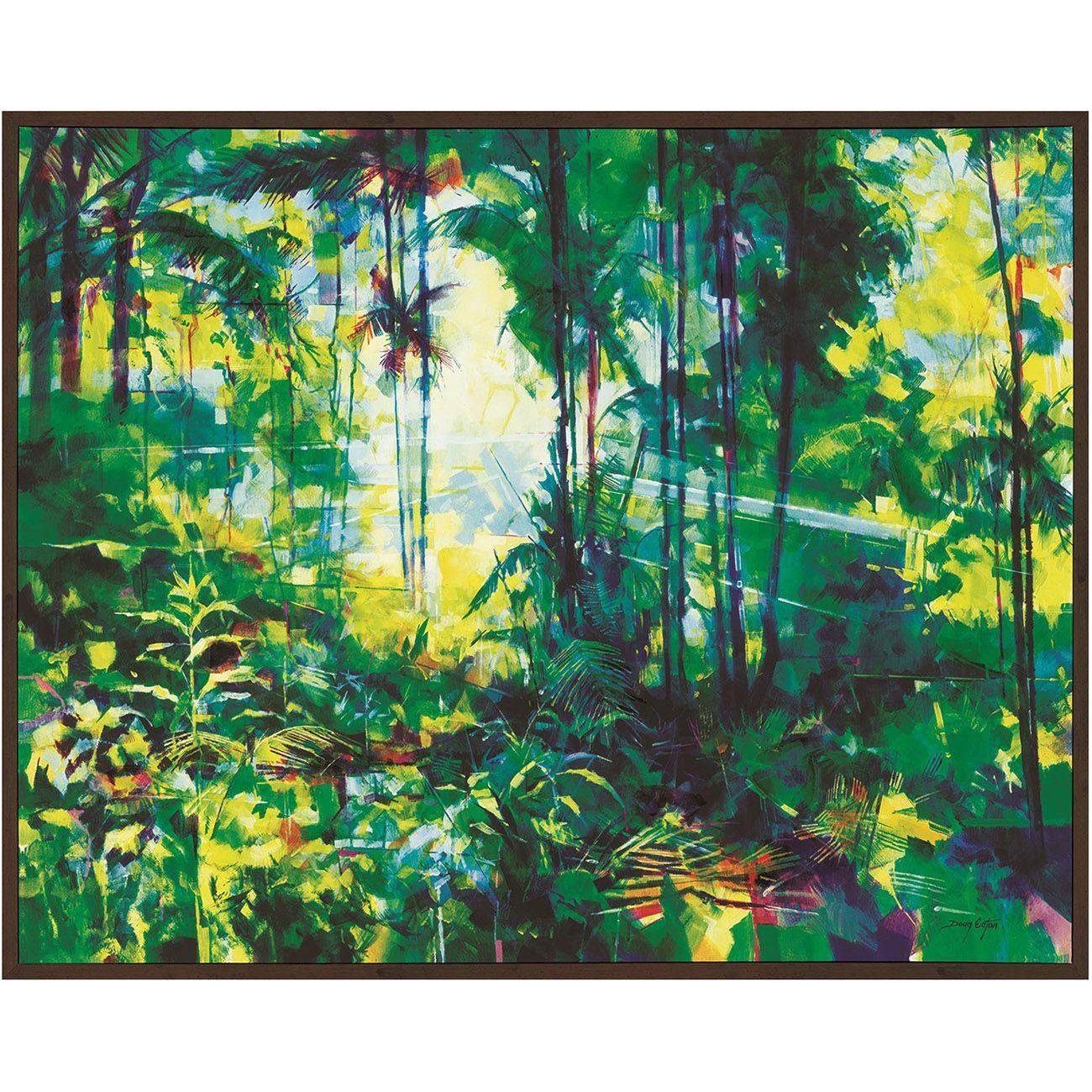 Doug Eaton (Tropical Rainforest) thumbnail