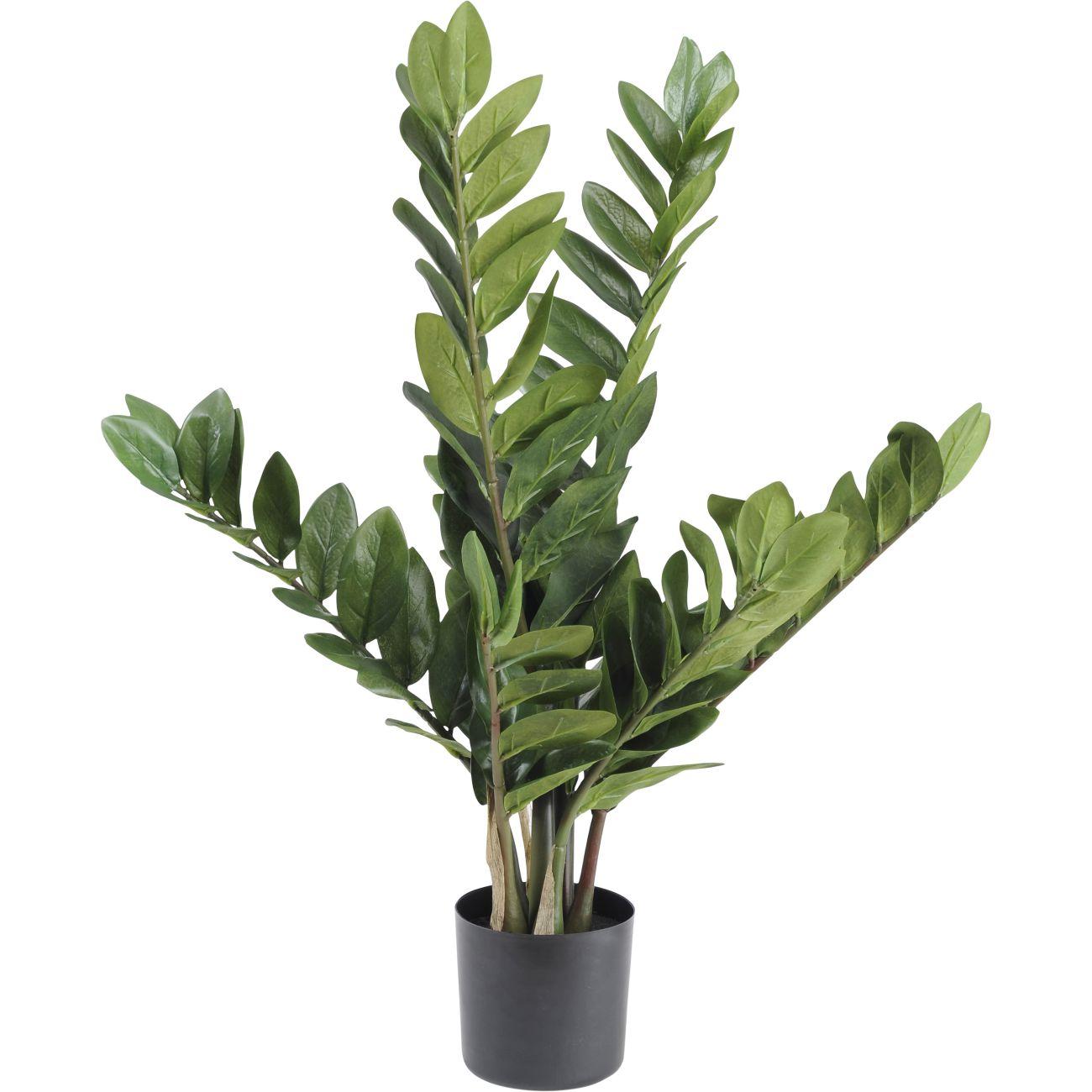 Faux Potted Zamiifolia Bush Plant, 70cm thumbnail