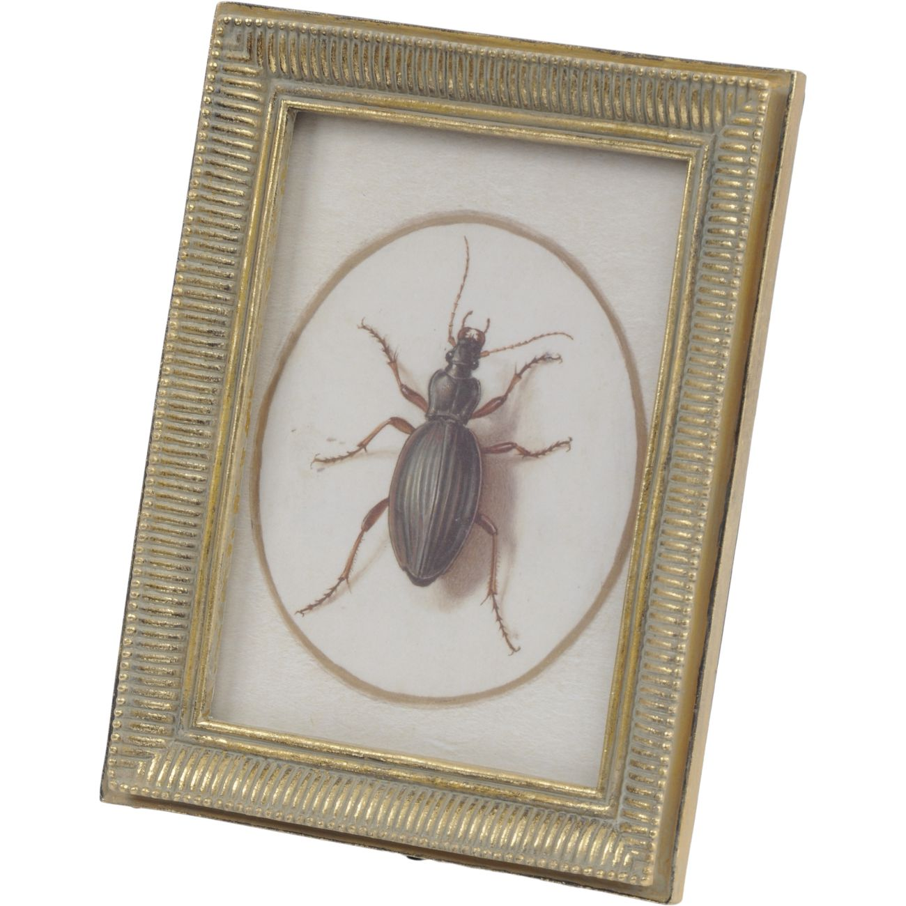 Antique Gold Polyresin Photo Frame with Carved Detailing, 13 x 18cm thumbnail